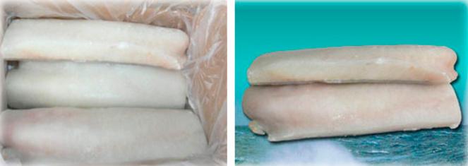 Frozen cod - Jumbo Loins
